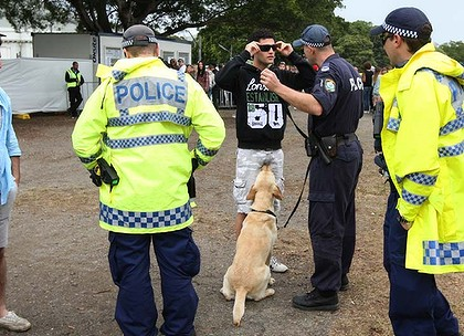 Sniffer dogs on the nose in NSW