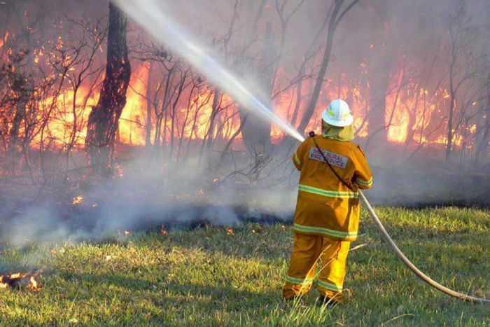Greens indicate substantial concerns with Rural Fire Service 10/50 Clearing Code of Practice