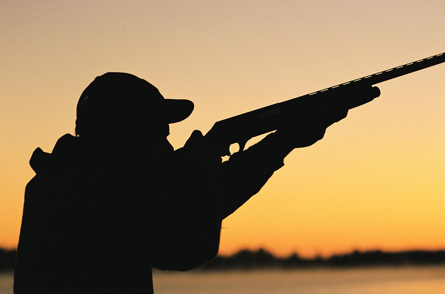 Greens call on NSW government for tougher hunting laws
