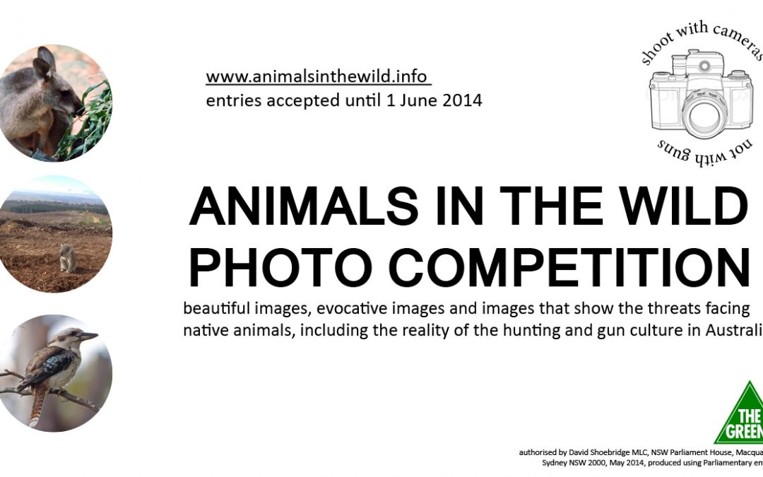 Animals in the Wild photographic competition opens Monday 12 May 2014