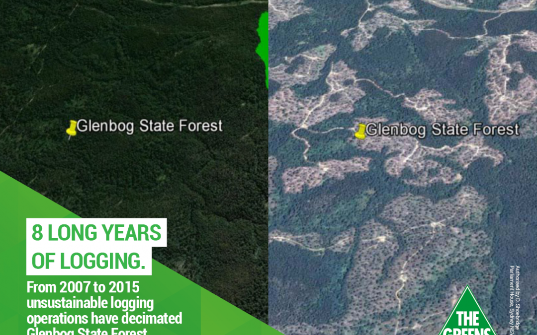 8 long years of logging