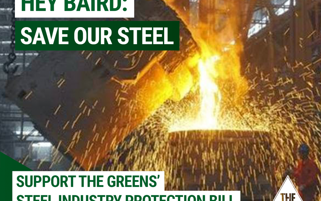 Historic bill to protect the future of Australian steel industry passes NSW Upper House