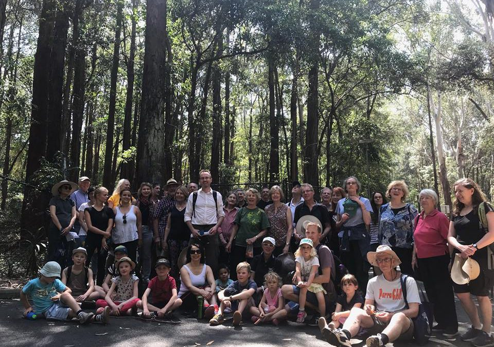 Greens bushwalking club: join now!